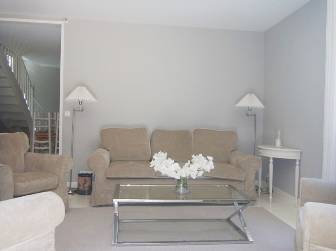 Cannes House Rentals